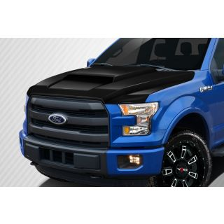 2015-Ford Motors  F150 Carbon Creations Grid Hood - 1 Piece -- 112584